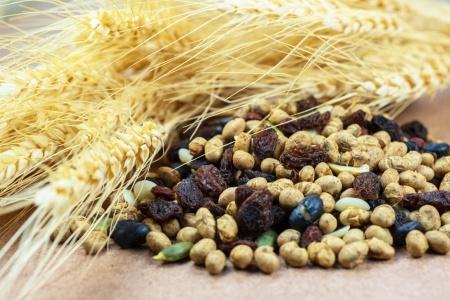 pšenice a luštěniny